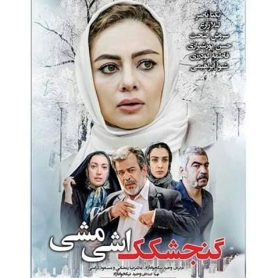 فیلم ایرانی گنجکک اشی مشی